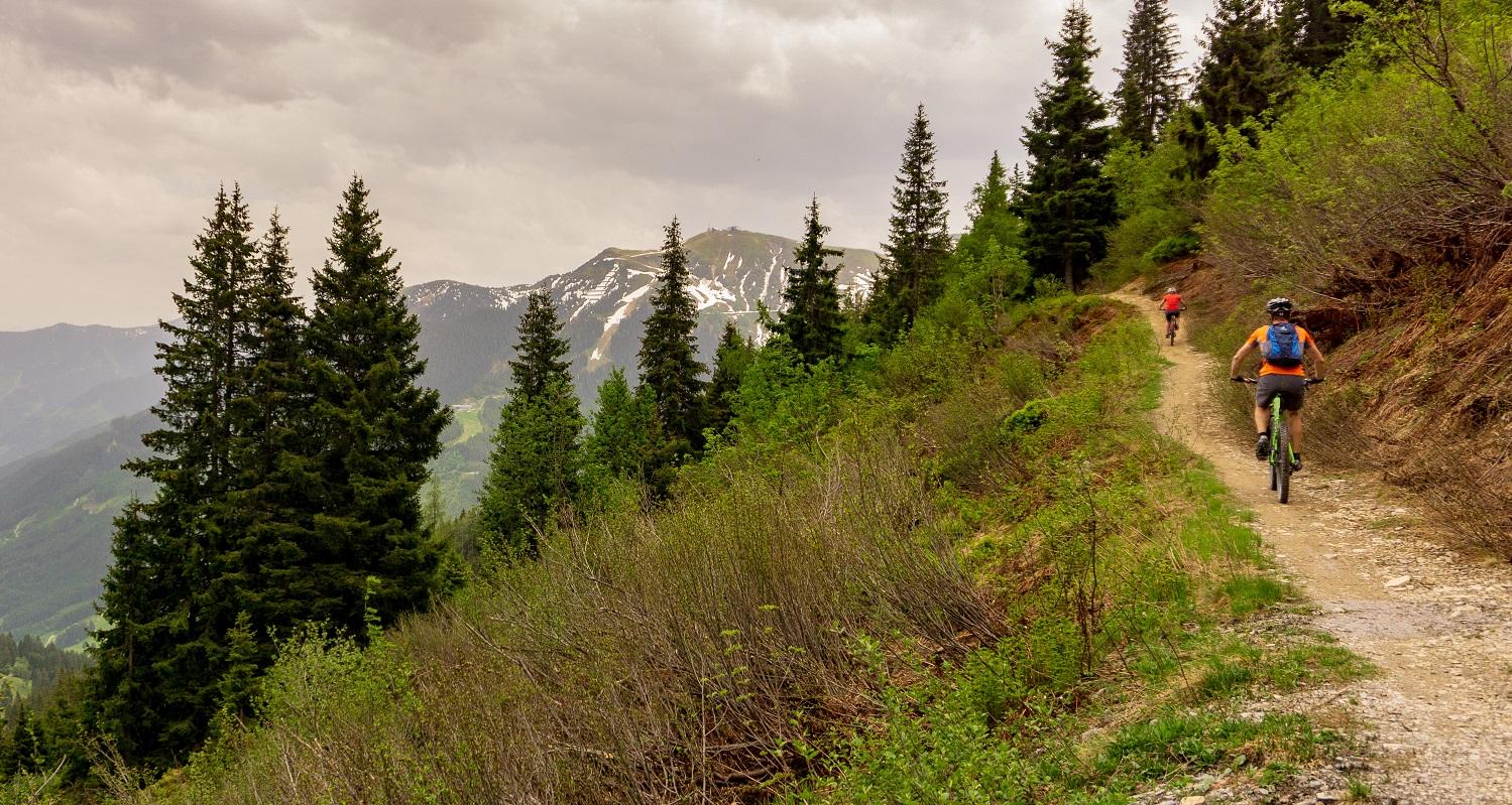 MTB trail 1500×800